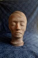 Ady-head - bushy birman desi