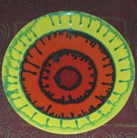 Kerámia fali dísz /  tál 28 cm átmérő,  jelzett   /Tófej? /