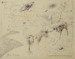 Gábor Dienes - 23 x 29 cm pen, paper 2000, framed