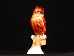 Owl of Bodrogkeresztúr