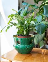 Retro ceramic pot, István Bere - cracked - green yellow openwork craftsman flowerpot