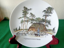 Scenic painted wall plate